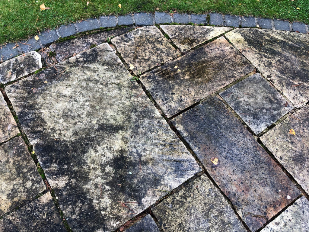 Removing lichen and moss from sandstone tile cleaning service
