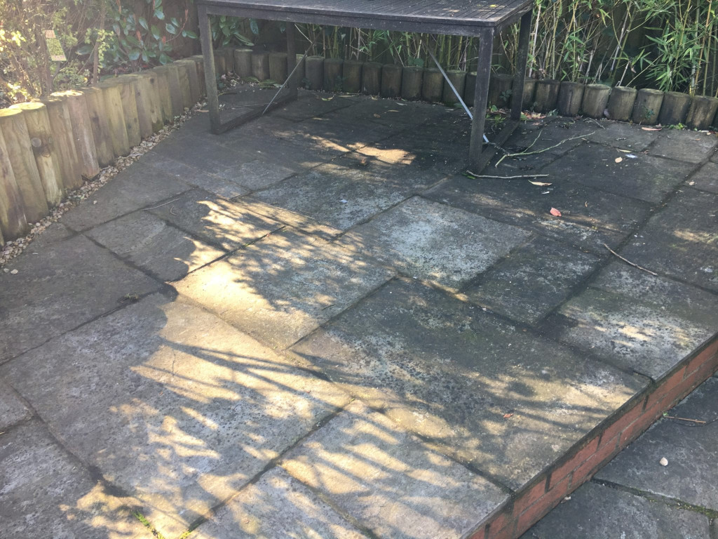 Sandstone cleaning removing lichen and moss