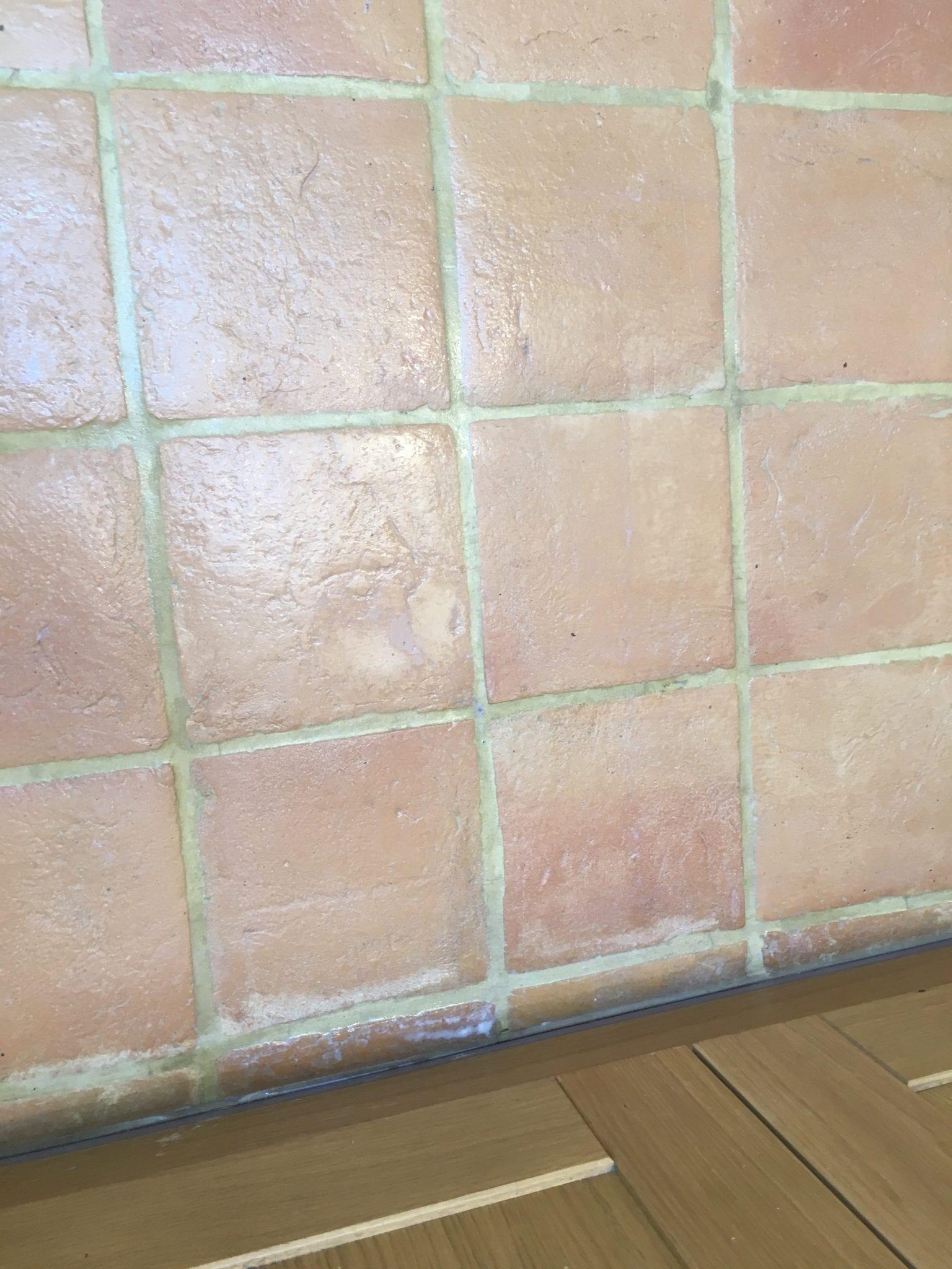 Terracotta Floor Cleaning (3)